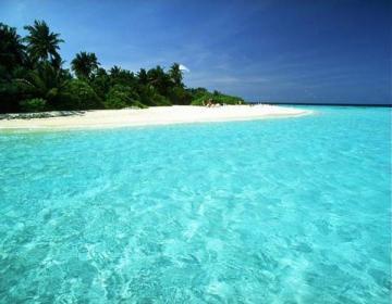 Paradisisk strand och klart vatten.