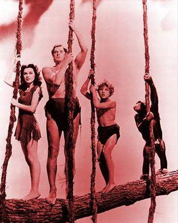 Följ Tarzan till trädkronorna – finn Supersaver