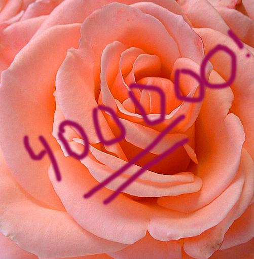 Vi firar 400 000 unika besökare med en stor ros