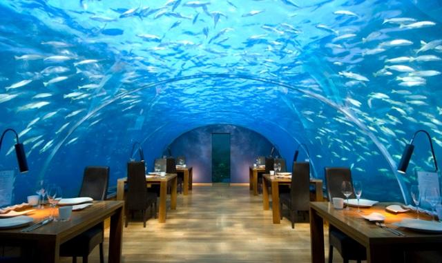 Ithaa Underwater Restaurant på Maldiverna